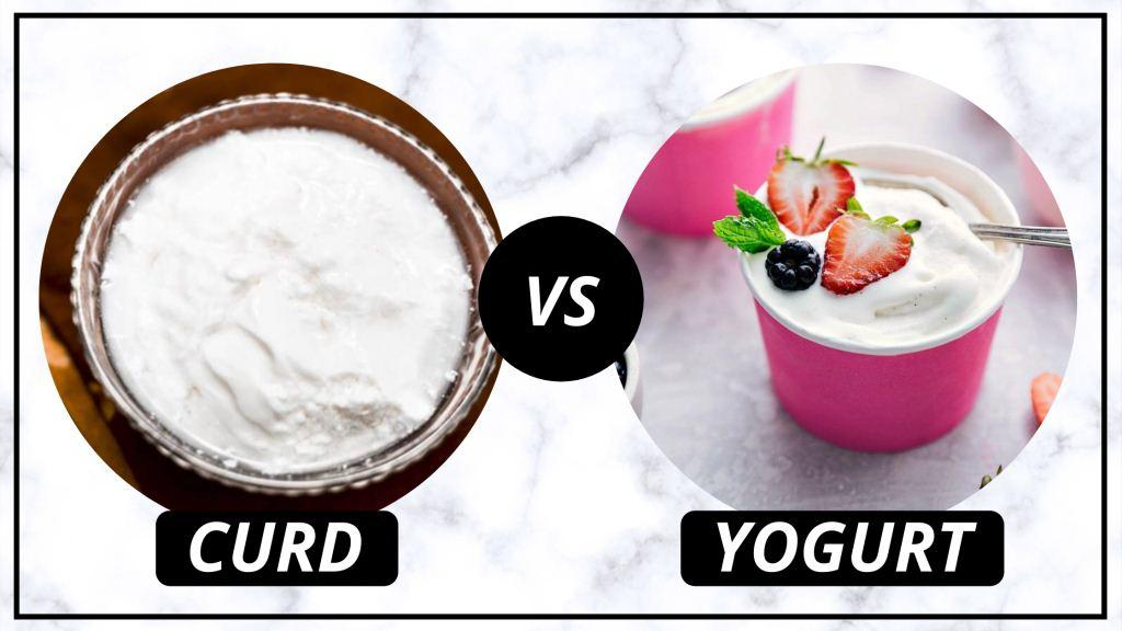 Curd v/s Yogurt: Know which one is the Healthiest